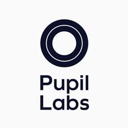 Pupil Labs